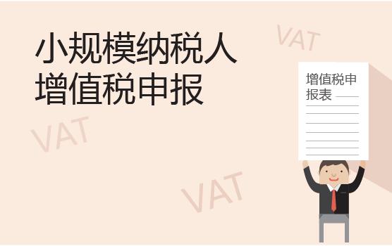 增值税申报表填报实务之小规模纳税人