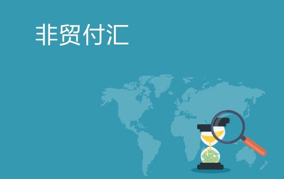 非贸付汇最新热点解析与实例探讨(上海站)
