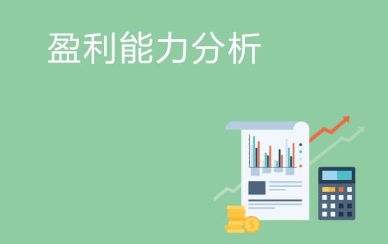 企业盈利能力分析实务