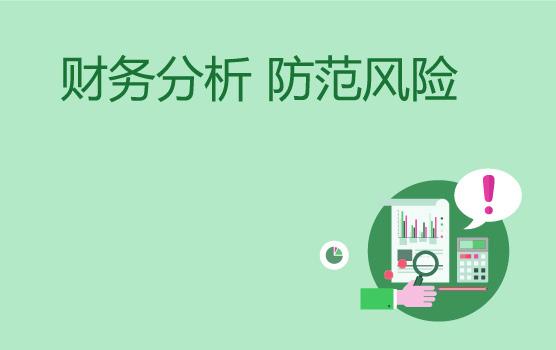 财务分析与风险防范的基本体系与方法