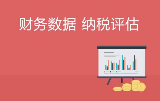 財務報表數據表象分析在納稅評估中的應用及風險釋放(青島)