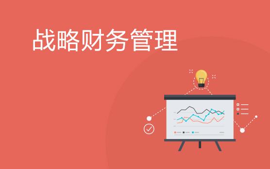 如何建立高效的企業戰略財務管理體系(重慶)