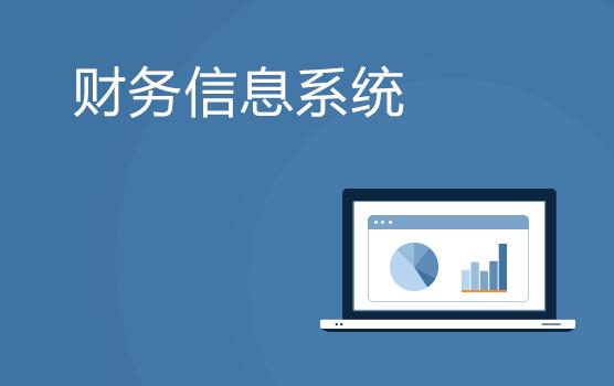 財務信息系統