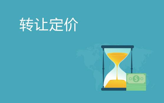 全案例解析转让定价风险要点(北京站)