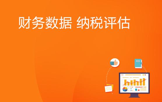 財務報表數據表象分析在納稅評估中的應用(南京)