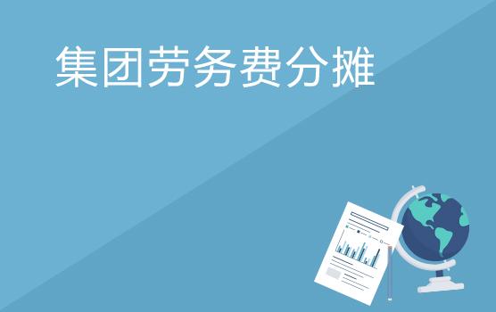 轉讓定價調查案例分析之集團勞務費分攤