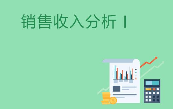 销售收入分析技巧 I