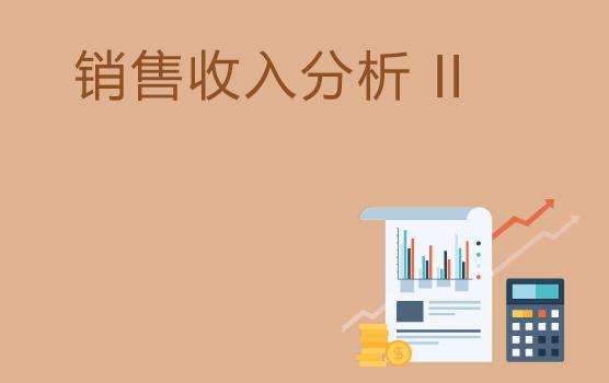 销售收入分析技巧 II