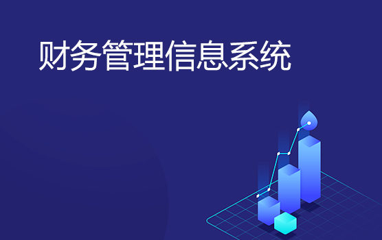 認識財務管理信息系統
