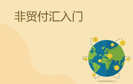 新政下擬真非貿付匯協議條款設置訓練營(上海站)