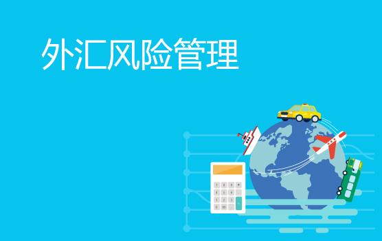 新常態下企業匯率風險與跨境資金管理(上海站)