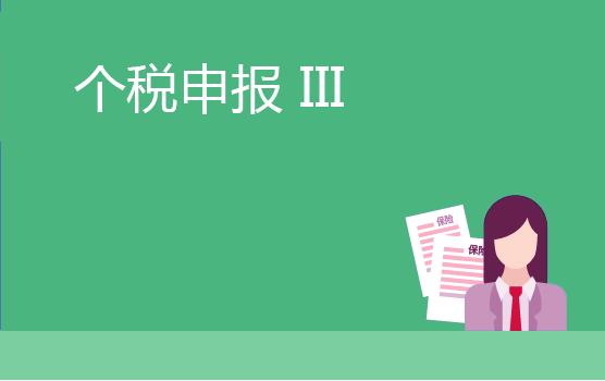 個人所得稅申報表精析 III
