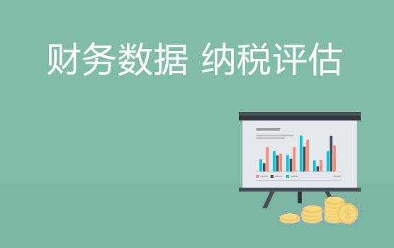 财务报表数据表象分析在纳税评估中的应用