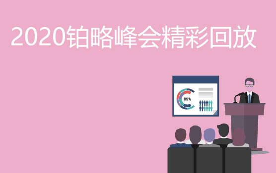 【2020铂略峰会精彩回放】Power BI 赋能企业财务转型